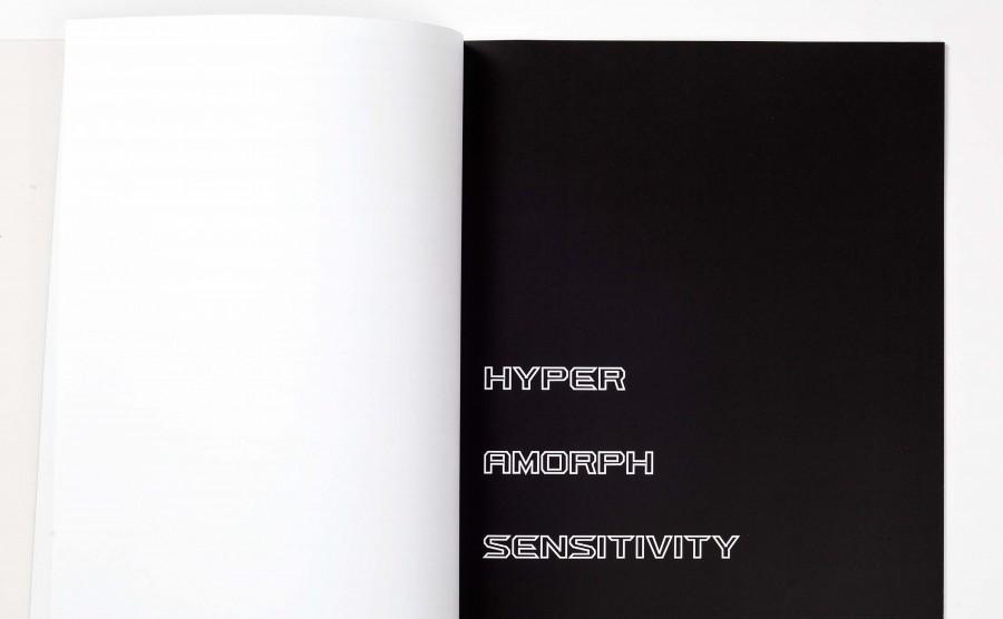 SonjaGerdes.HyperAmorphSensitivity